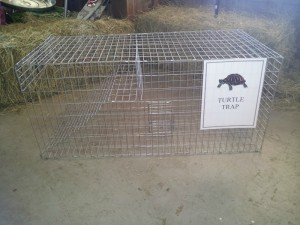 jan.turtle trapRS