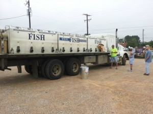 fish truck