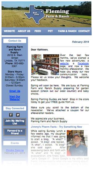 newsletter-example1