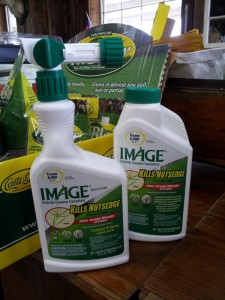 image herbicide for bahia grass