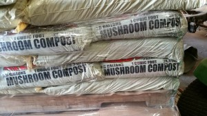 mushroom compost 300x168 NEW Products : Lady Bug Brand Compost