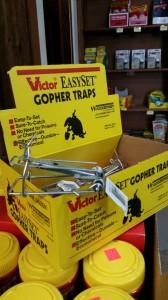 gopher traps