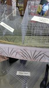 fish traps e1436181966974 168x300 Catfish Food