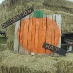 decoration hay