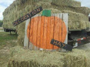 decoration hay
