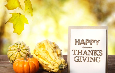 Thanksgiving Day :: Closed