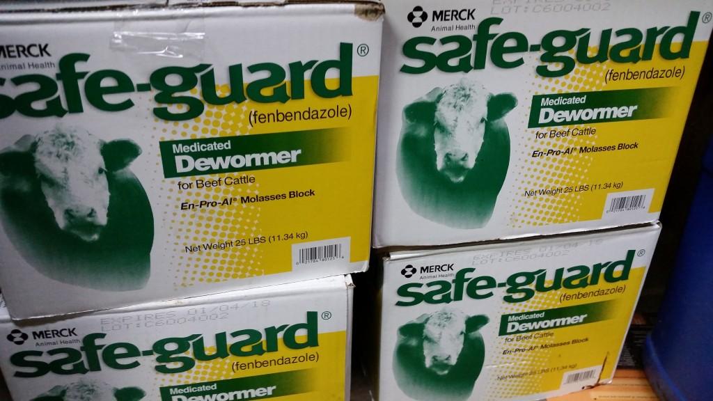 safeguard...  </div>   <a href=