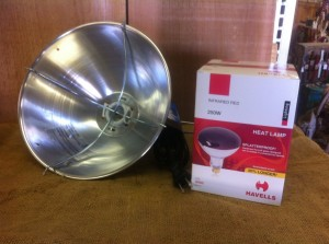heat lamp and bulb 300x223 Dec. 19 : Featured Item of the Week : Heat Lamps & Bulbs